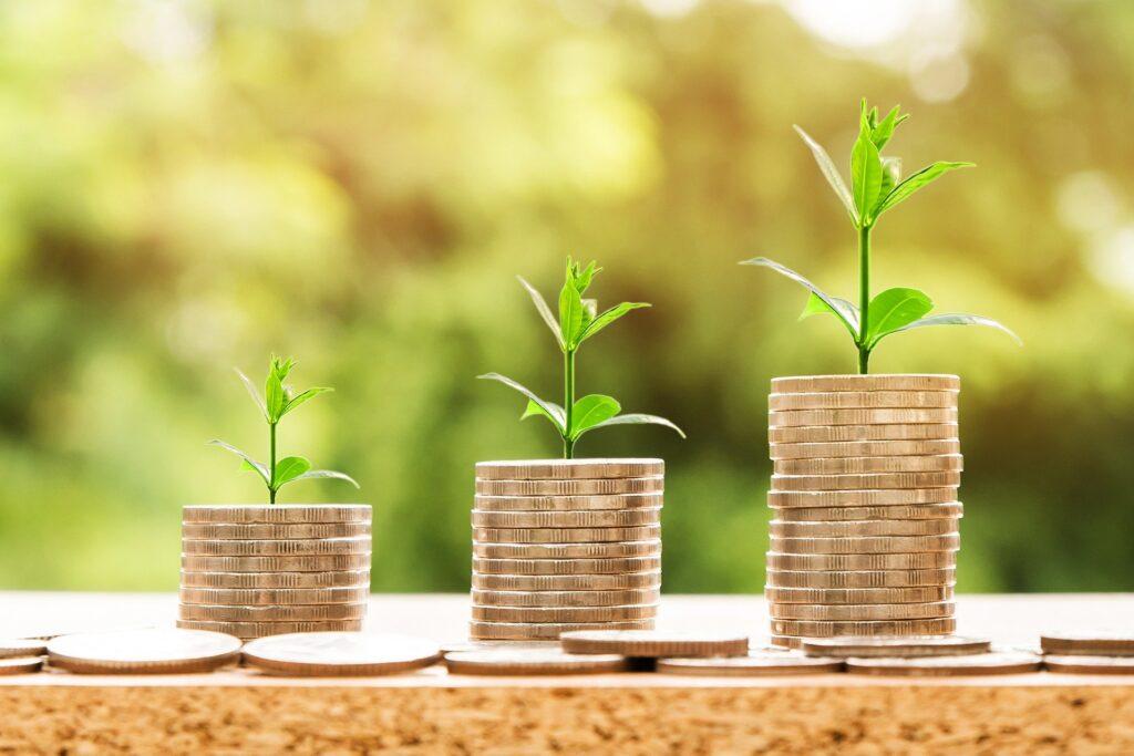 vækst af indkomst